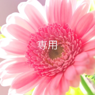 acca - 美品 ♡ acca ♡ 即完売 クリップ & ヘアピン セット