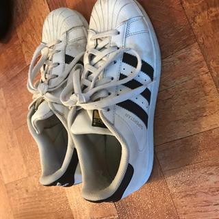 アディダス(adidas)のadidas スニーカー 靴 早めにお願いいたします。(スニーカー)