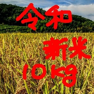 新春セール令和新米 低農薬玄米10キロ 山田錦の里より農家直送。。