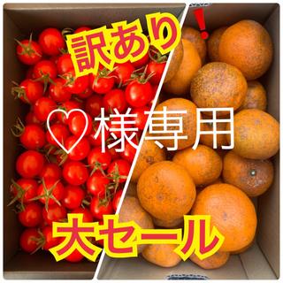 ♡様専用 訳あり❗️幻の河内みかん 2kg  キャロルセブン1kg(フルーツ)