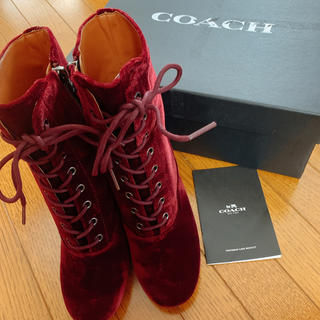 COACH - 新品 正規品 COACH コーチ 編み上げブーツ ベロア
