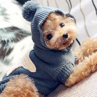 犬服 かわいい ニット