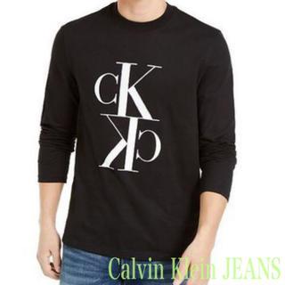 Calvin Klein - 【海外限定モデル★USサイズMラスト1点】カルバンクライン ロンT