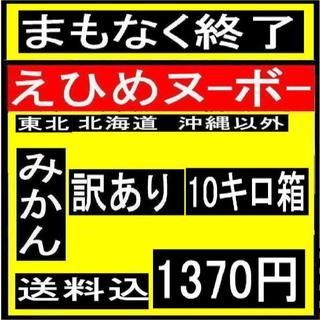★ き えひめヌーボーの 訳アリみかん 10キロ