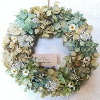 (送料無料)ドライフラワーリース あじさいと白いお花と、(ドライフラワー)