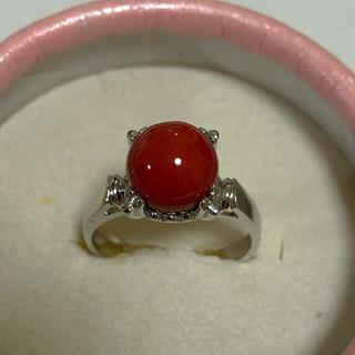 赤珊瑚リング(リング(指輪))