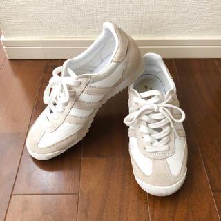 adidas - 【限定モデル】アディダス★スニーカー