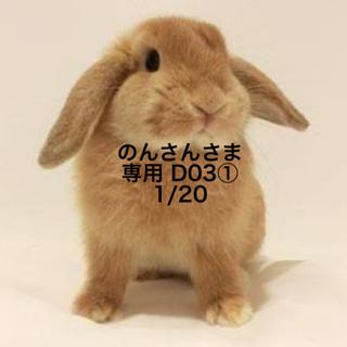 ★1/20のみ★のんさんさま専用ページ (その他)