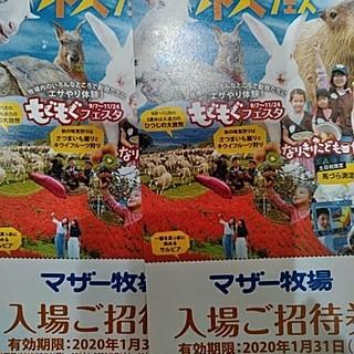2枚 マザー牧場 招待券 入場券 千葉県 (遊園地/テーマパーク)