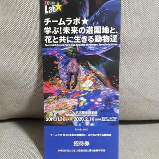 りゃんさん専用 チームラボ 名古屋市科学館 大人1名分 招待券(その他)