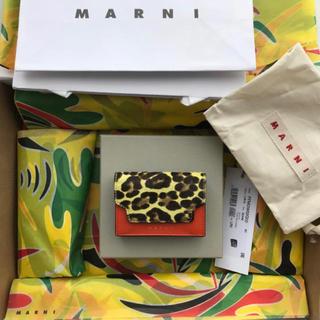 マルニ(Marni)のMARNI 三つ折り財布 正規店購入品 日本未入荷(財布)