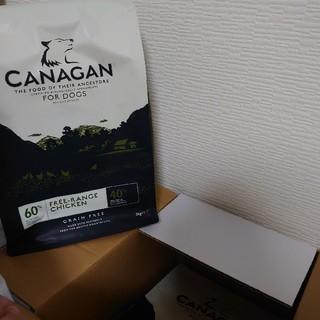 カナガン ドッグフード 3袋(ペットフード)