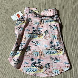 エイチアンドエム(H&M)のペット用アロハシャツ(新品)(犬)
