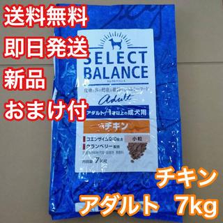 セレクトバランス チキン アダルト 成犬 7kg ドッグフード (ペットフード)