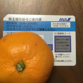 ANA(全日本空輸) - ANA株主優待券1枚