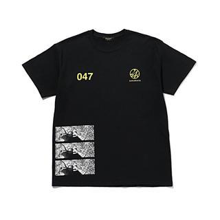トゥエンティーフォーカラッツ(24karats)の未使用品 24karats tシャツ ららぽーとtokyobay限定(Tシャツ/カットソー(半袖/袖なし))