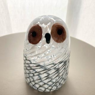 iittala - Owlet Lumi Oiva Toikka バード 箱あり イッタラ
