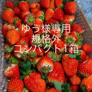 ゆう様専用●規格外コンパクト1箱●さがほのか苺(フルーツ)