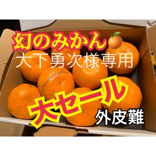 大下勇次様専用 幻の河内みかん 6kg  ☆完熟無農薬ミカン☆ 農家直送(フルーツ)