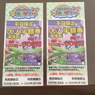 東京あそびマーレ チケット 二枚(遊園地/テーマパーク)