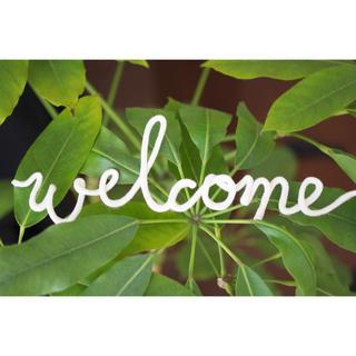 instagramや結婚式のウェルカムスペースに使えるCL【welcome】(ウェルカムボード)