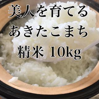 農家直送 美人を育てるあきたこまち 精米10kg (米/穀物)