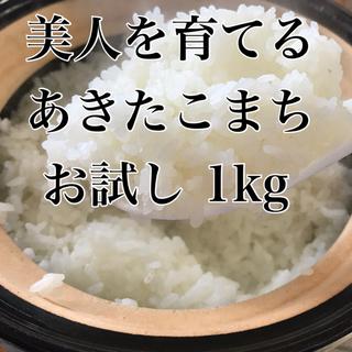 【お試しサイズ】農家直送 美人を育てるあきたこまち 精米 1kg (米/穀物)