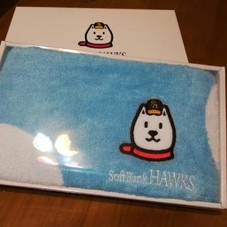 フクオカソフトバンクホークス(福岡ソフトバンクホークス)のソフトバンクHAWKS タオル(記念品/関連グッズ)