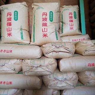 清流育ち 丹波ささやま米 玄米20㎏(令和元年産)
