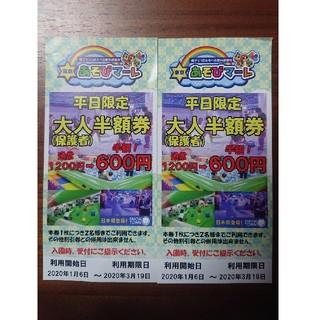 東京 あそびマーレ 平日 半額チケット(遊園地/テーマパーク)