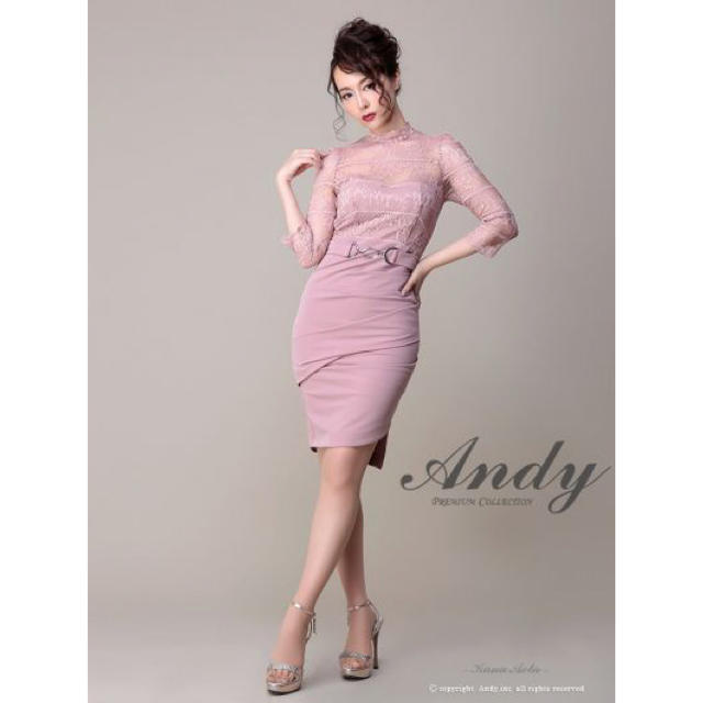 Andy(アンディ)のandy長袖ピンク レディースのフォーマル/ドレス(ナイトドレス)の商品写真