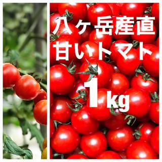 八ヶ岳(長野県) 産 ミニトマト 約1kg バラ 甘くて味が濃い