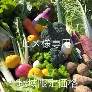 野菜BOX LLサイズ ヒメ様専用(野菜)