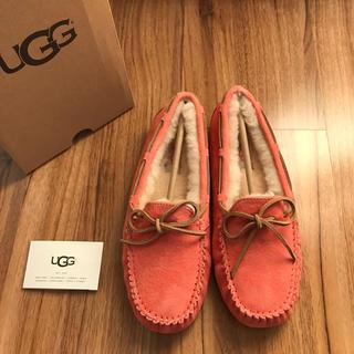 UGG - 新品!UGG アグ ダコタ  ランタナ US8 25cm
