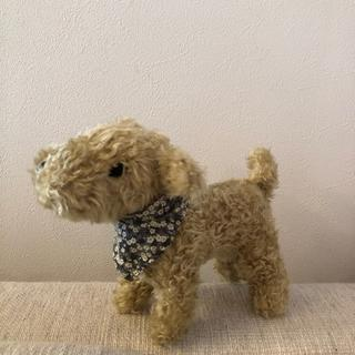 Bonpoint - bonpoint 犬 ぬいぐるみ