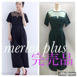 merlot - ラスト1点 本日限定セール 4680円→4200円