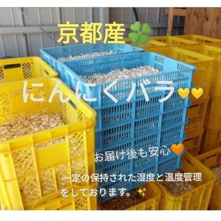 京都産にんにくバラ🧡💛増量60粒数以上♥無農薬栽培🌱お醤油漬けにも🧡