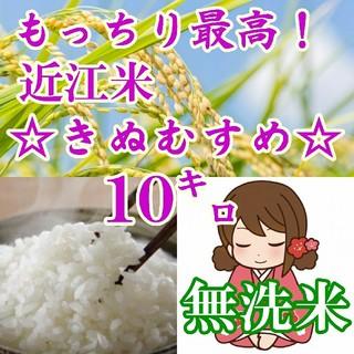 【無洗米】近江米きぬむすめ10kgを精米