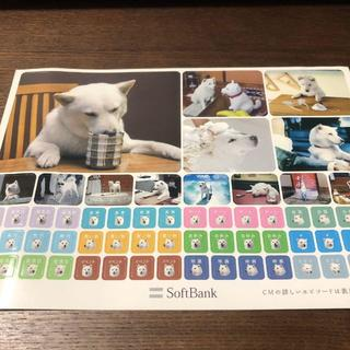 ソフトバンク(Softbank)のソフトバンク お父さん犬 シール(その他)