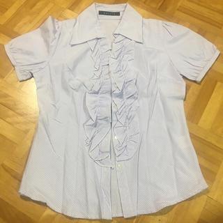パープル ストライプ シャツ 半袖(シャツ/ブラウス(半袖/袖なし))