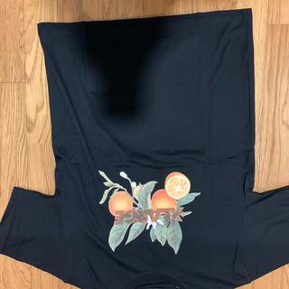エクストララージ(XLARGE)のxlarge tシャツ 新品未使用 lサイズ(Tシャツ/カットソー(半袖/袖なし))