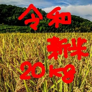 新春セール令和新米 低農薬玄米20キロ 山田錦の里より農家直送。。。。