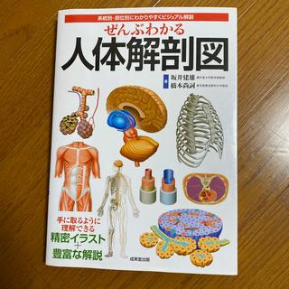 ぜんぶわかる人体解剖図 系統別・部位別にわかりやすくビジュアル解説(健康/医学)
