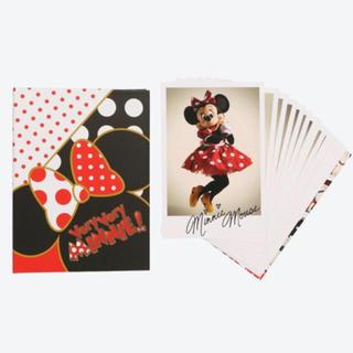 Disney - ディズニーランド♡ベリーベリーミニー ポストカードホルダーセット