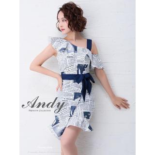 アンディ(Andy)のドレス(ナイトドレス)