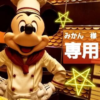 Disney - ミラコスタ 限定 エクスクルーシブ トート ぬいぐるみバッジ