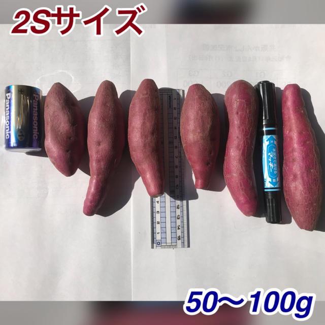 なると金時2Sサイズ 送料無料 食品/飲料/酒の食品(野菜)の商品写真