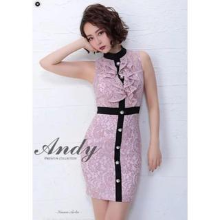 アンディ(Andy)のAndy 総レースミニドレス(ナイトドレス)