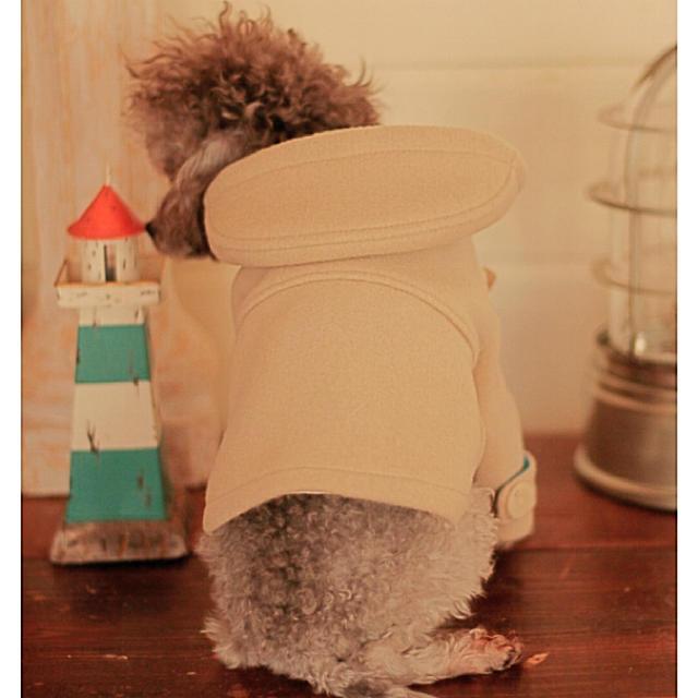 アトリエgg リュバンドール パピリーヒルズ ブルブブ 犬服 ドッグウェア その他のペット用品(犬)の商品写真