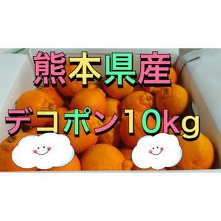 熊本県産デコポン10kg